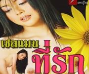 หนังไทย...เซลแมนที่รัก ภาค 1