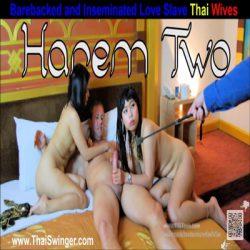 Thai Harem Swinging 2